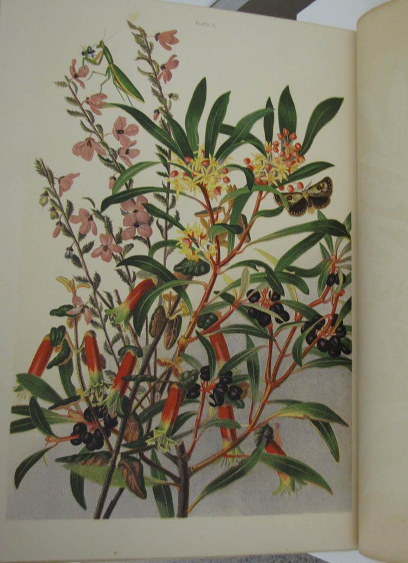Australian and International Fine Art Auction